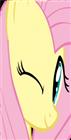werock9965's avatar