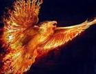 Phoenix750's avatar