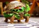 iiplay4food's avatar