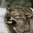 dogmail's avatar