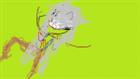 Dr_Genius's avatar
