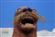 Kyron's avatar