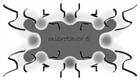 microtavor5's avatar