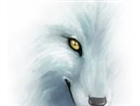 ghostwolf1114's avatar