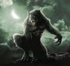WitheredCreeperX's avatar