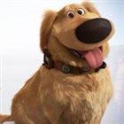 JaredRoe's avatar
