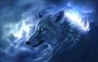 Wolfie's avatar