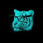 CreeperXplosion's avatar