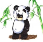 pandadrew's avatar
