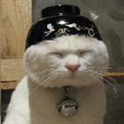 kawaiidesubakachan's avatar