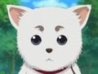 Secretness's avatar