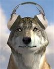 DarkFangxFurryx's avatar