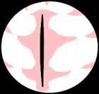 Droid224's avatar