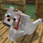 Maxwebster's avatar
