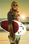 IronChewbacca's avatar