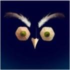 semiliat's avatar