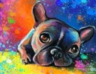 louiecoco's avatar
