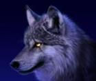 B1GBADW0IF's avatar