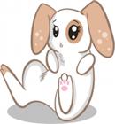 Snowy01's avatar