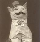 memangamma's avatar