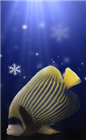 cmpenney's avatar