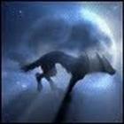 minerboy6666's avatar