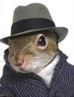 SwimSquirrel's avatar