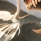 Zabon's avatar