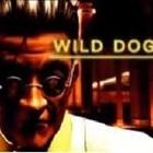 wild_dog's avatar