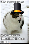 thefatcat235's avatar