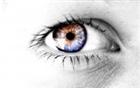 Faolan73's avatar
