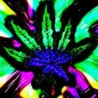 jamack2010's avatar