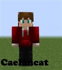 Caelancat's avatar