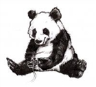 panda869's avatar
