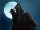 Werewolf5153's avatar