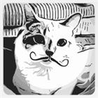 Warkittenz's avatar