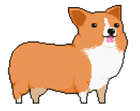 TurtleSquirt's avatar