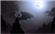 Surviveandcreate's avatar