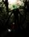 artcrime's avatar
