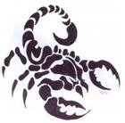 sanz999's avatar