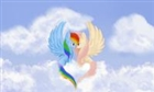 Rainbowdash277's avatar