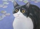 cattail1's avatar