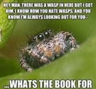 SpiderBroseph's avatar