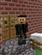 The_Last_Gamer's avatar