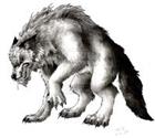 Woolfman's avatar