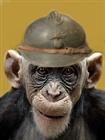 Kukipett's avatar