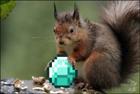 Flarkinater's avatar