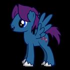 night_bandit's avatar