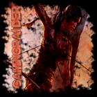Superpooch22's avatar