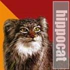 hippocat's avatar